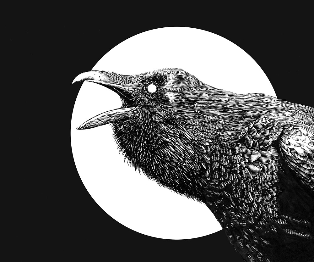 The Raven by leib-chigrin