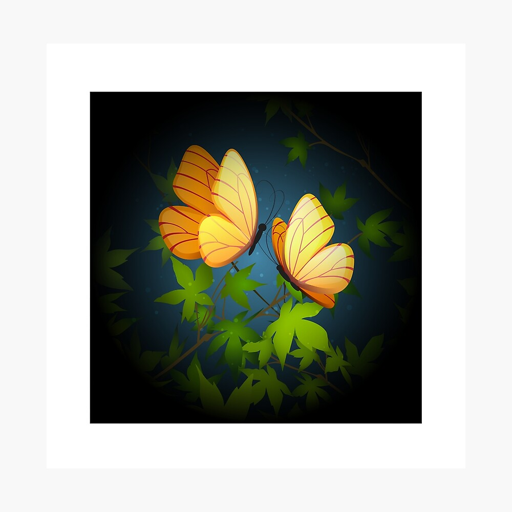 Two Flying Butterflies Photographic Print