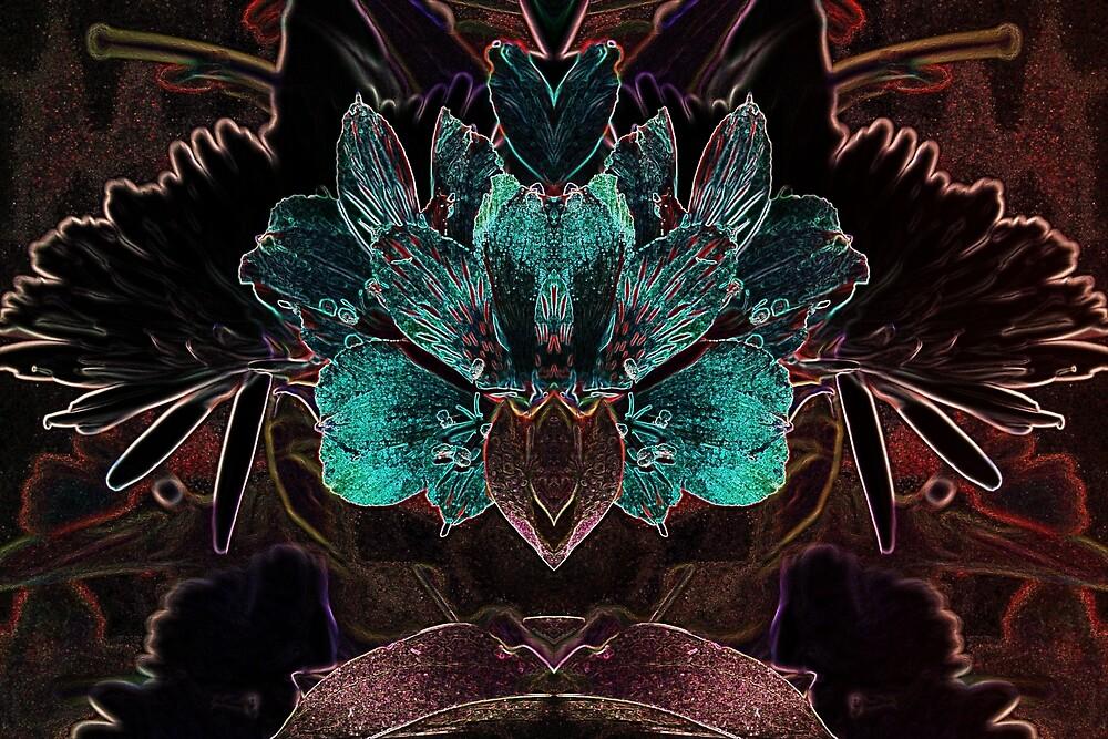NIGHT BLOOM by BOLLA67