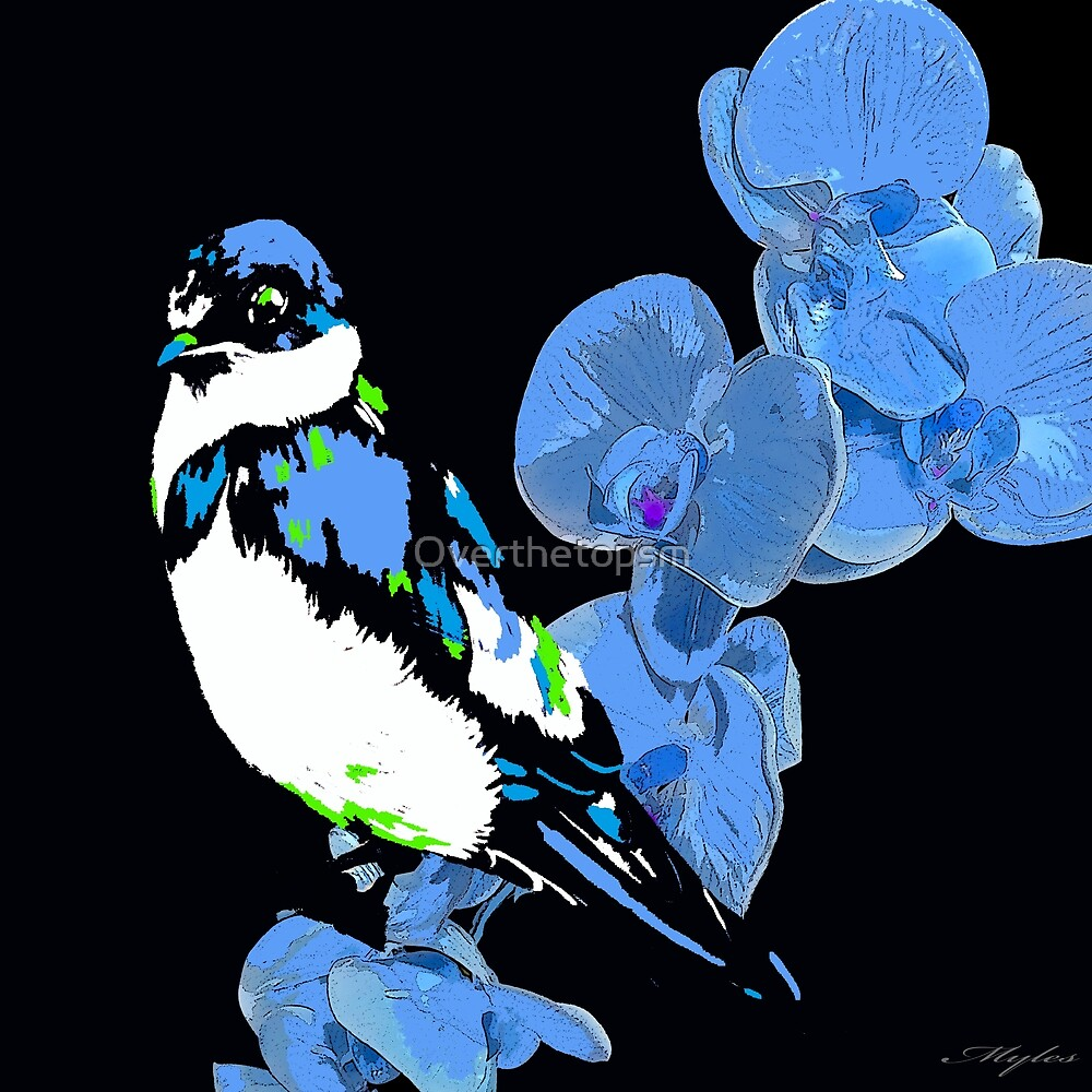 MIDNIGHT BLUE ORCHID AND BIRD by Saundra Myles
