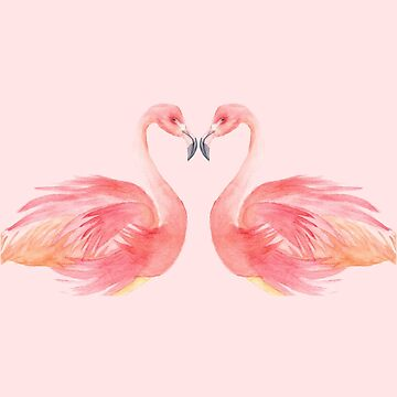 Flamingo by shashaluart