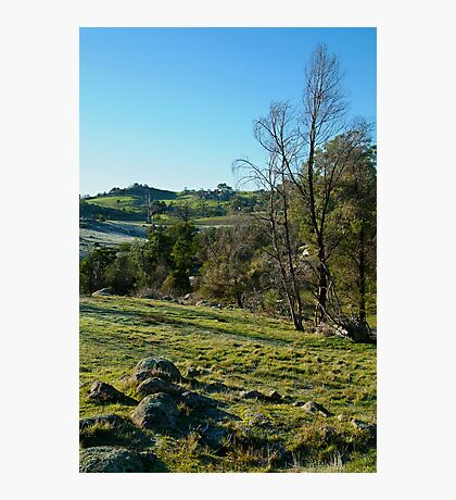 Morning Frost, Strathbogie Ranges,Victoria Photographic Print