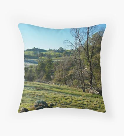 Morning Frost, Strathbogie Ranges,Victoria Throw Pillow