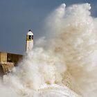 A Big Splash by Heidi Stewart