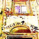 Bracciano: antique shop wine and kitchen by Giuseppe Cocco