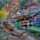 Fall Colors In The Canyon by K D Graves Photography