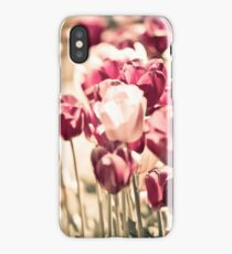 Tulips at Floriade Canberra 2011 iPhone Case