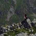 Landscape Photography by wiggyofipswich