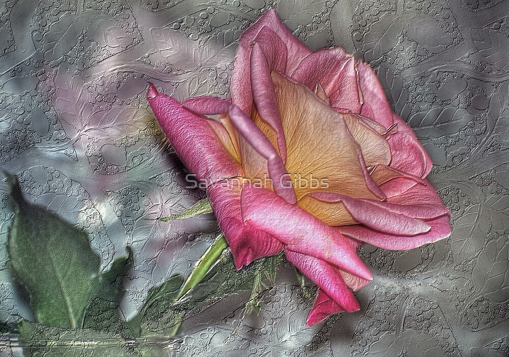 Granada Rose by Savannah Gibbs