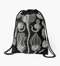 Crinoids by Haeckel Drawstring Bag