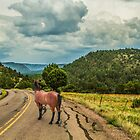 Fossil Creek Road by Randy Turnbow