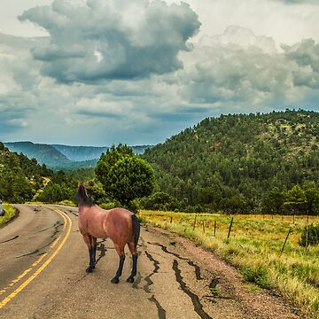 Fossil Creek Road by BigRedCurlyGuy