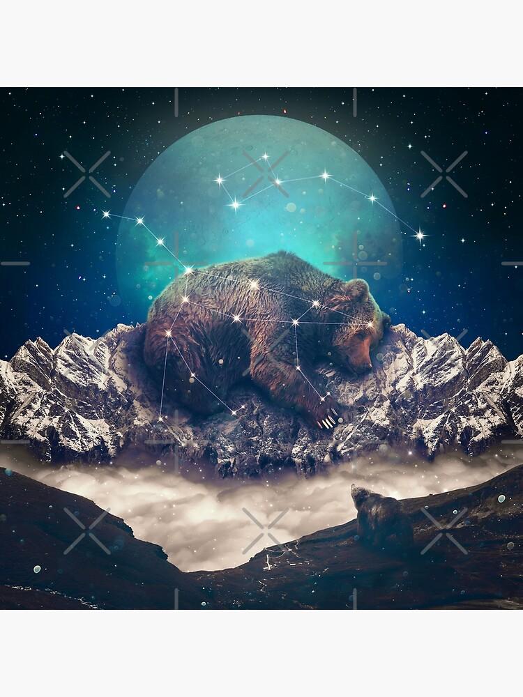 Under the Stars | Ursa Major by soaringanchor