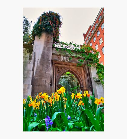 St Dunstan in the East & The Deadly Daffodils - London Photographic Print