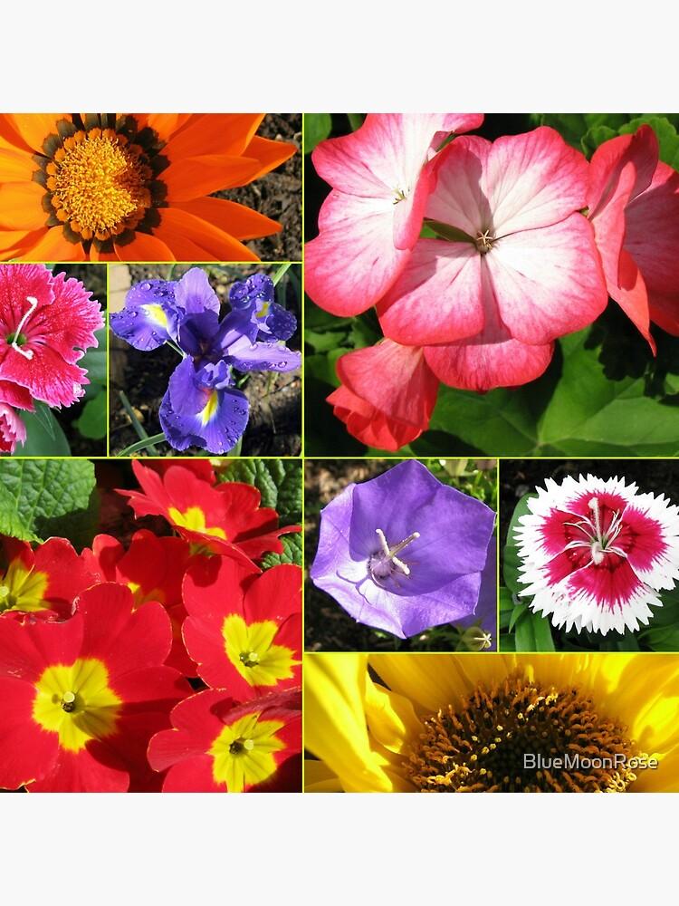 Sunkissed Blumen-Collage von BlueMoonRose