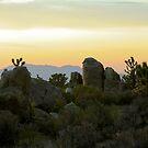 Cima Sunset 5 by Chris Clarke