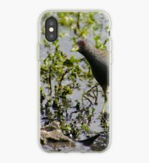 Australian Spotted Crake iPhone Case