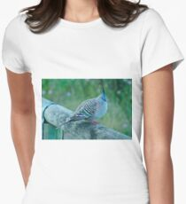 Crested Pigeon Women's Fitted T-Shirt
