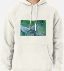 Crested Pigeon Pullover Hoodie