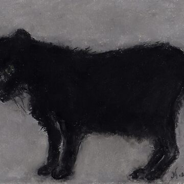The Old Black Cat (pastel) by nikihilsabeck