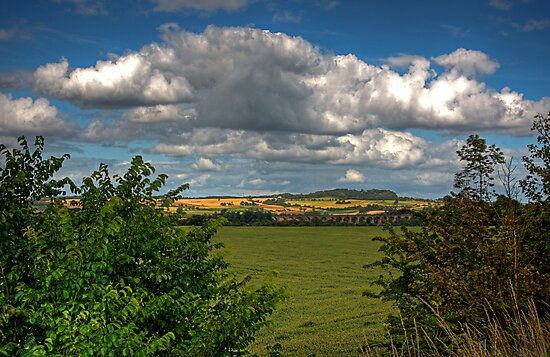 West Lothian Countryside by Tom Gomez