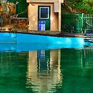 Pool Hut - MacCallum Pool - Cremorne Point - Sydney Australia by Bryan Freeman