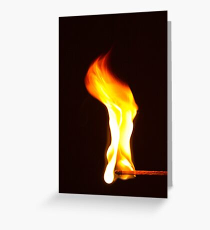 Don't Play With Fire! Greeting Card