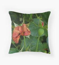 Lady with a Hat Throw Pillow