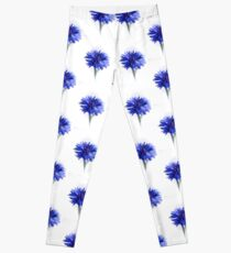 Blue Cornflower Leggings