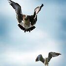 Take Flight by Jane Brack