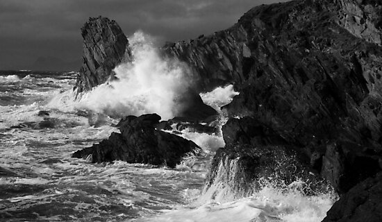 Untamed by dougbphotos