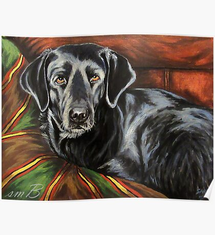 Buddy Alpha Dog Poster