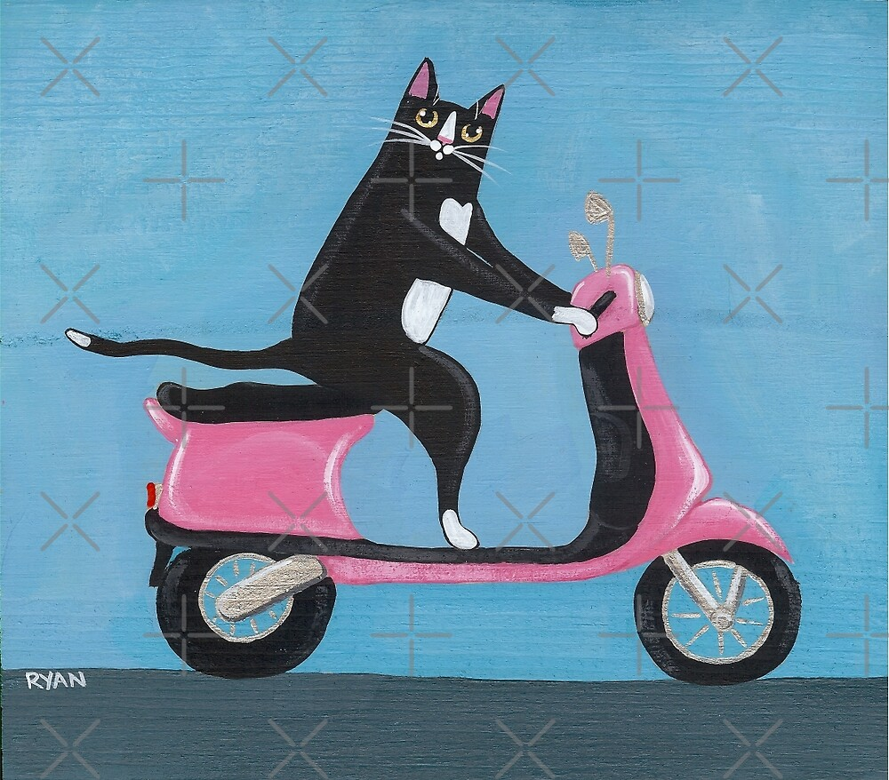Cat on a Vespa by Ryan Conners