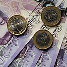 Money, Money, Money... by Michael Hadfield