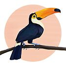 Tropical Toucan by lauragraves