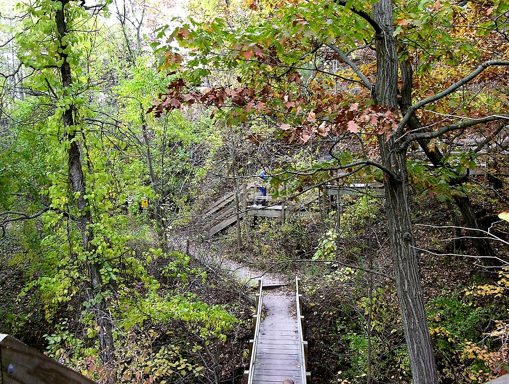 Stairs at Starved Rock, Illinois by circa24