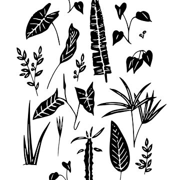 Botanic poster by anisg