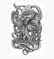 Hydra design Photographic Print