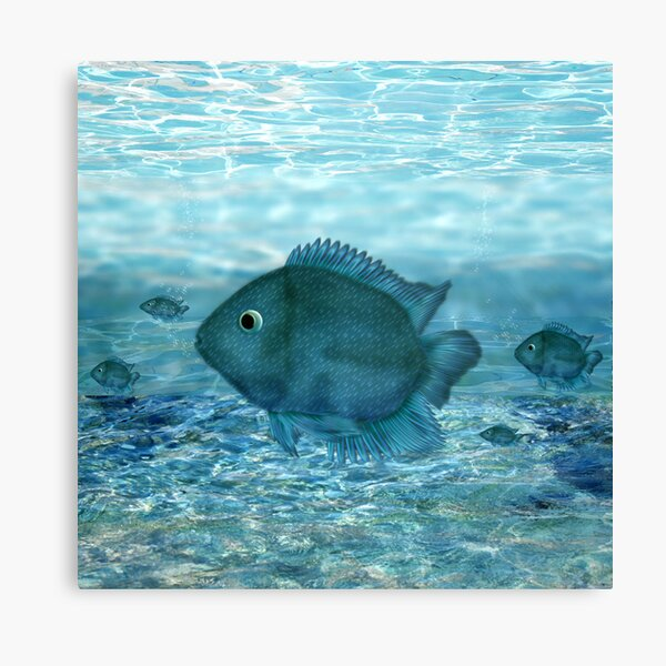Blue fish... Canvas Print