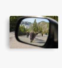 Objects in Mirror... Canvas Print