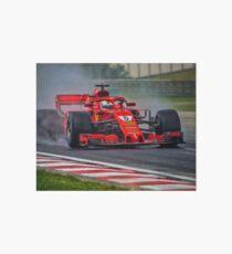 Sebastian Vettel  Art Board