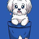 Pocket Cute Maltese Dog by TechraNova