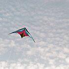 Stunt Kite in Blue Skies by Steven Newton