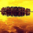 Golden Sunset by Pauli Hyvönen