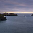 Pentire Head and Mouls Island by M G  Pettett