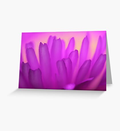 Little Pink Fingers Greeting Card