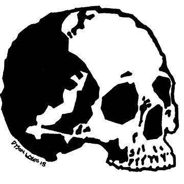 Skull Variations 1 by DysonLogos