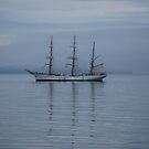 Tall ship by Ciara(Kevin & Paula) Neupert