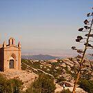 Tarragona by Barbara Caffell