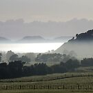 Clevedon Valley, Auckland, New Zealand by Vic Potter